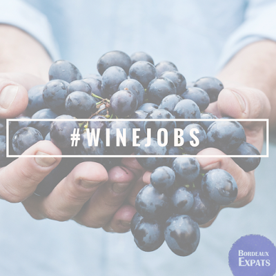 Wine Jobs in Bordeaux