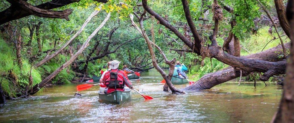 Bordeaux Expats - Canoeing