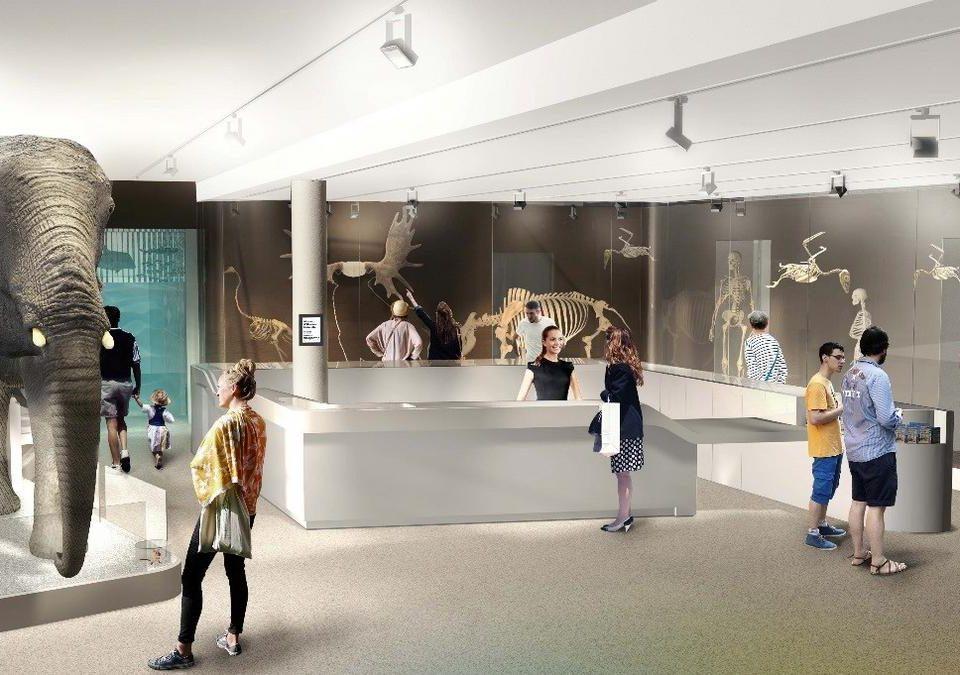Natural History Museum Bordeaux