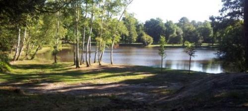 Bois des Sources – Cestas